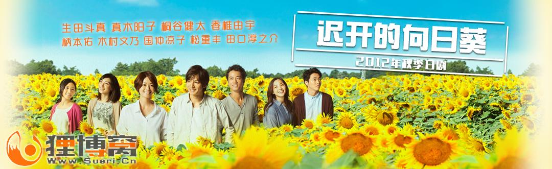 《迟开的向日葵》B站海报